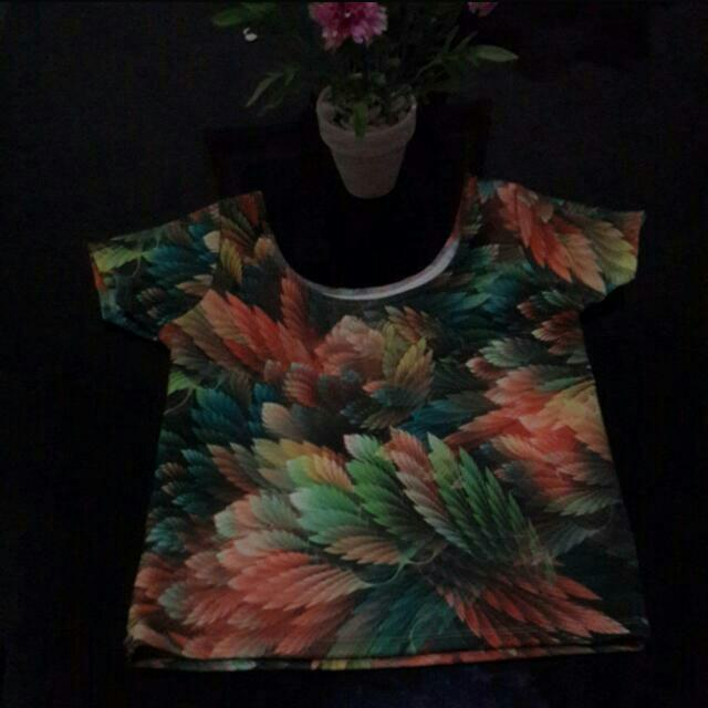 FOREST CROPTEE