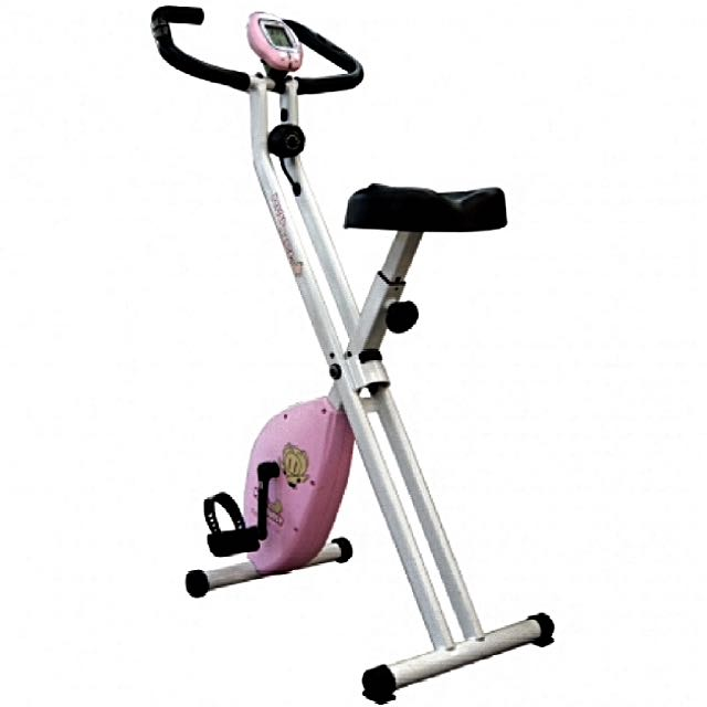 X-Bike 19807 磁控健身車 🚴🏻🚵🏻♀️🎖🥇