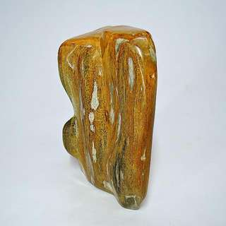木化玉&木化石(25)