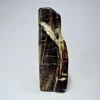 木化玉&木化石(27)