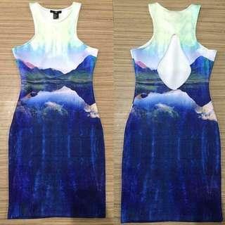 REPRICED H&M dress