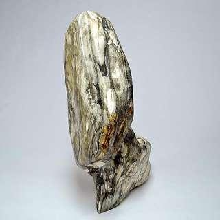 木化玉&木化石(30)