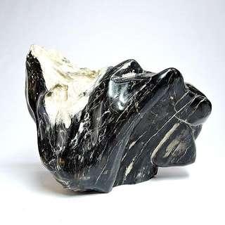 木化玉&木化石(33)