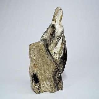 木化玉&木化石(34)
