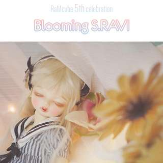 限定  RaMcube Blooming S.Ravi Limited 1/6 Bjd  眠頭
