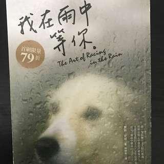 二手小說 我在雨中等你 關於寵物狗 作者 賈斯史坦Garth Stein