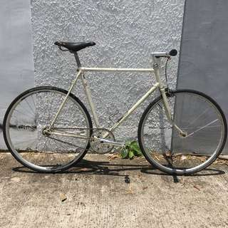 56cm Converted fixed gear, lugged steel road bicycle