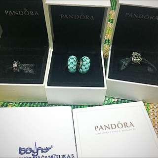 Pandora 潘朵拉