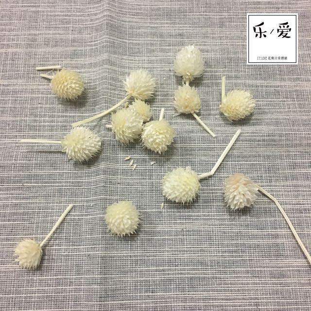 樂愛L'e Love 乾燥花材-乾燥莓果(白色)
