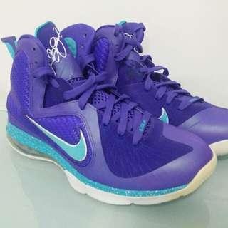 Nike LEBRON HORNET