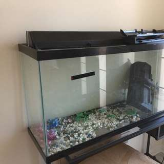 EUC 60 Gallons Aquarium