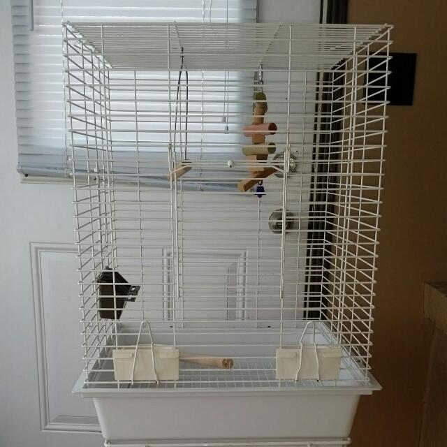 Bird Cage