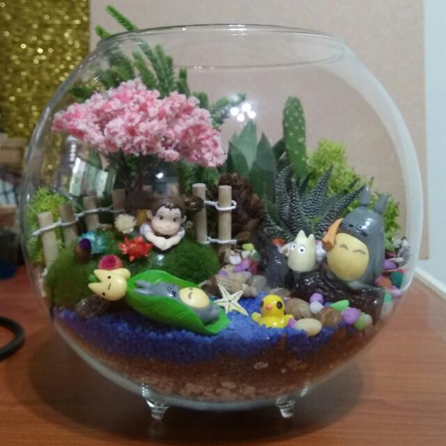 Sold Succulents Terrarium Totoro Series Gifts Birthday