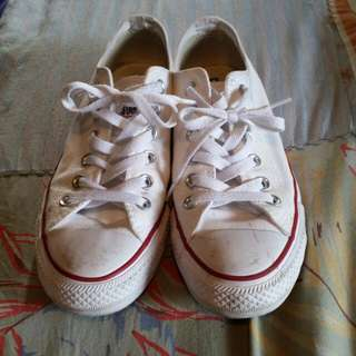 White Women's Converse All Stars