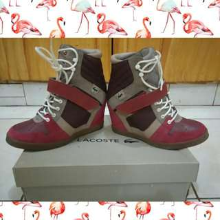 Lacoste Original Limited Edition Highcut (boots Style)