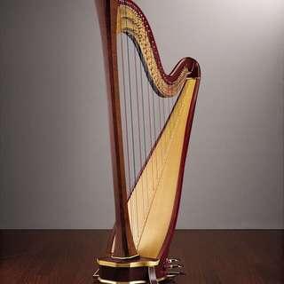 私人豎琴及樂理導師 (英國皇家音樂學院) Harp