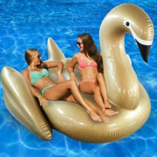 Unicorn, Goose, Swan, Flamingo INFLATABLES