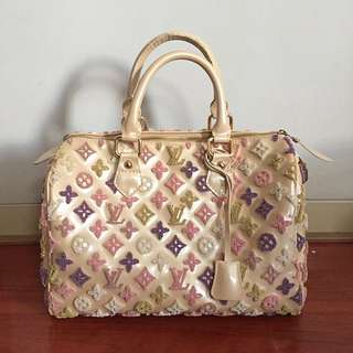 Embroidery Louis Vuitton Bag