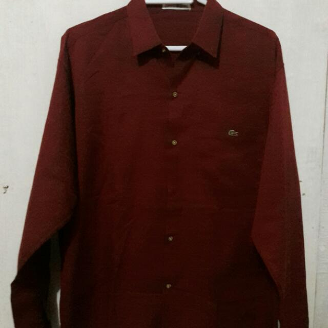 Maroon Long Sleeves Lacoste