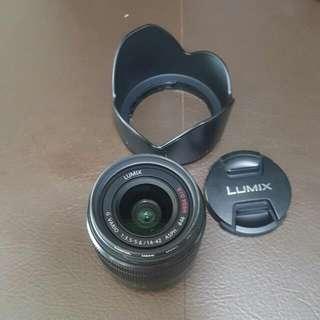 Panasonic Lumix G Vario 14-42mm f/3.5-5.6 ASPH MEGA O.I.S