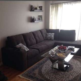 Sectional Sofa( 5 Months Old )