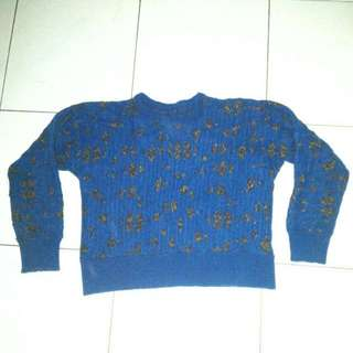 Blue Croptee Sweater