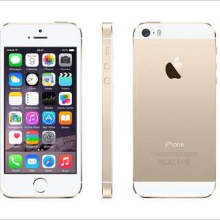 5s Gold In Good Condition