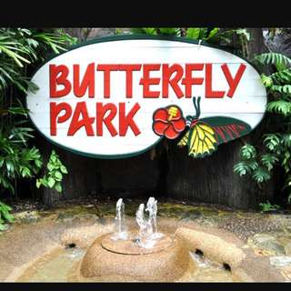Butterfly & Insect Kingdom @ Sentosa