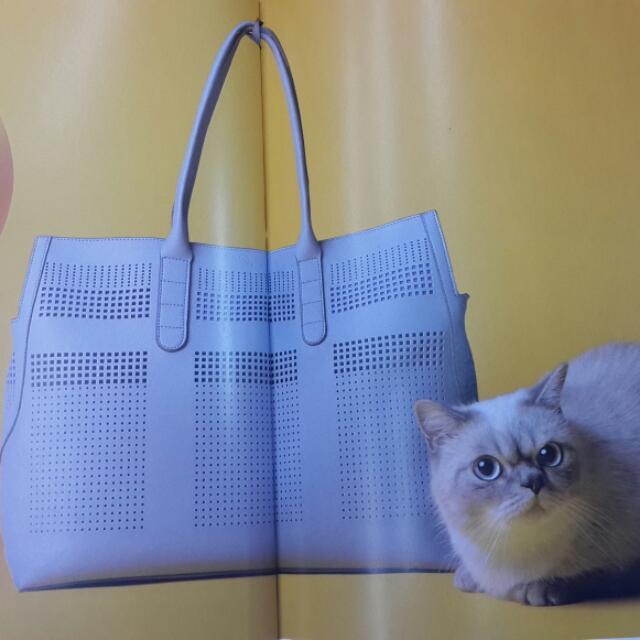 ibiyaya  全新上市寵物皮革包