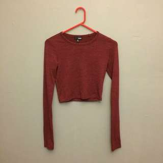 Wilfred Long Sleeves Crop Top
