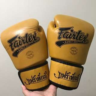 Fairtex 10oz Muay Thai or Boxing Gloves