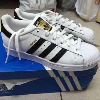 Adidas金標23.5
