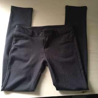 Grey Tight Pants