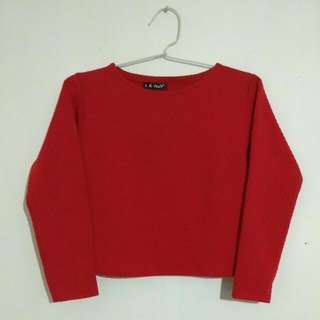 Red Crop Top Sweater