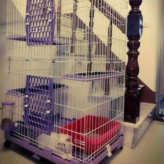 貓籠雙層,三塊踏板,可關三隻成貓!