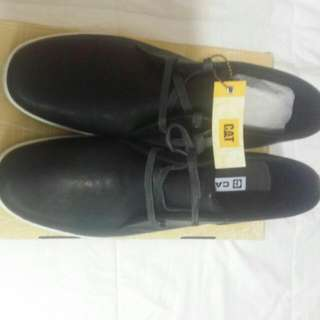 new shoes from CAT COMPANY size us 12