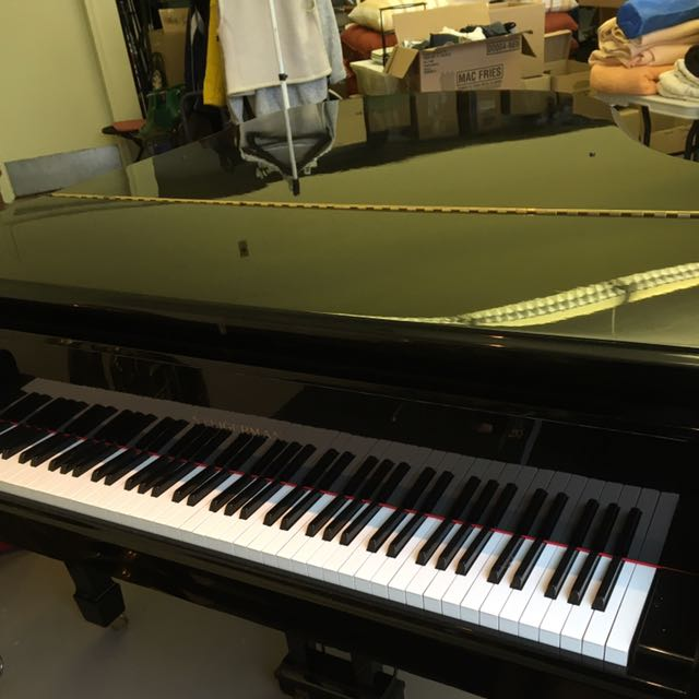 6' Ebony Steinhagen Baby Grand Piano For Sale