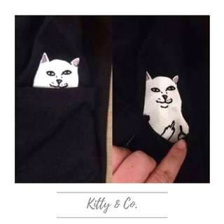 Pocket Cat With Surprise