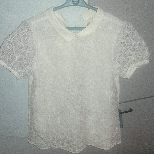 Collared Lace Blouse