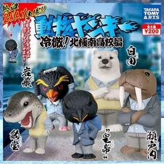 【可愛扭蛋專賣店】T-ARTS-動物高校生北極南高校 動物不良少年 全套5隻 現貨不用等 扭蛋轉蛋 企鵝 北極熊 海豹