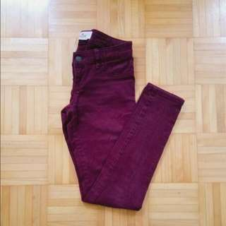 Hollister Burgundy Jeans