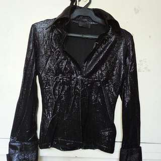 Long Sleeve (Fitted And Shimmery)
