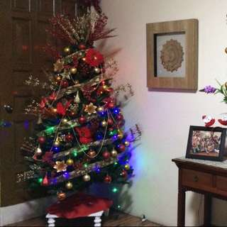 All In Christmas Tree
