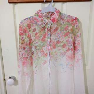 Sheer Button Down Blouse/Shirt