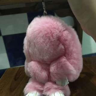 Fluffy Bunny Coopenhagen