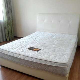 "Queen Size Bed frame and 9"" spring mattess"