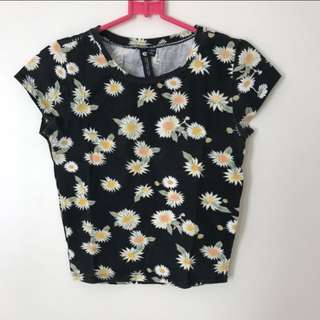 Cotton On Daisy Crop Top
