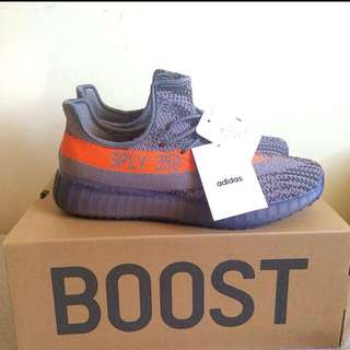 Brand New Yeezy Boost Us Size 10