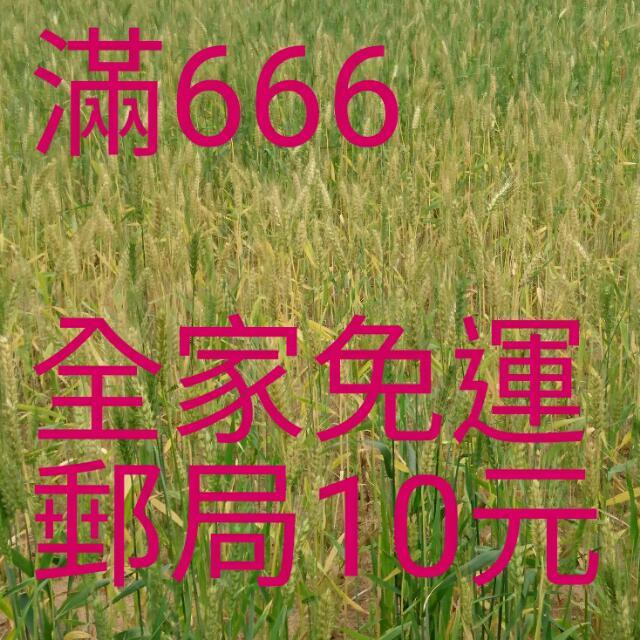 滿666免運
