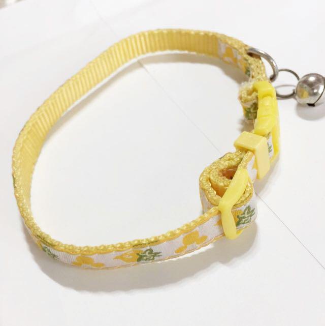 黃色米奇毛孩頸圈*含運